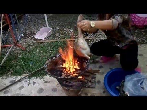 คั่วแฮ่มไก่ลาว (ไก่ผัดใบโกศล) laos food