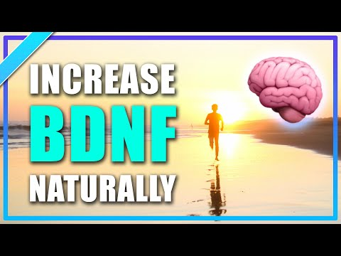 🔥 How Running and Exercise Improves Memory - BDNF Neurogenesis Brain Grow Neurons | Training