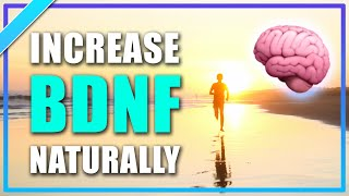 How to Improve Memory | Why Running Helps The Brain Grow Neurons & Increase BDNF | Exercise Training