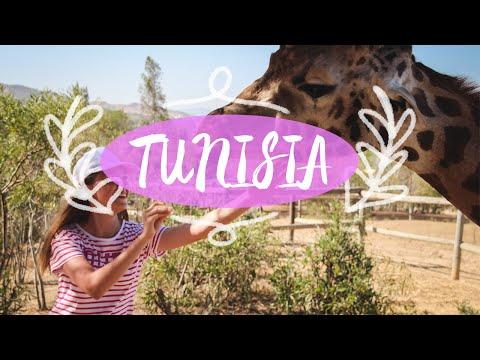 VLOG: ПОЕЗДКА В ТУНИС ЧАСТЬ#2// VLOG: TUNISIA TRAVEL DIARY PART#2