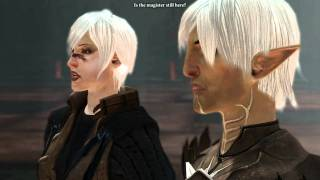 Dragon Age 2 Fenris gets angry - Slaves are useful.
