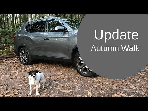 An Autumn Dog Walk in the Woods, introducing our next adventure! [CC]
