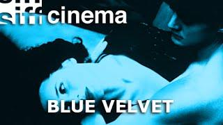 Blue Velvet (Trailer)