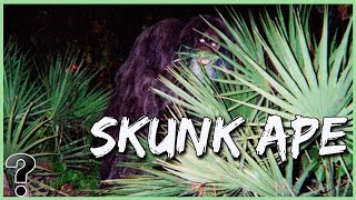 What If The Skunk Ape Was Real?