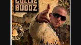 collie buddz - come around