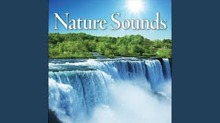 Nature Sounds MP3 – Instrumental Native American Flute Song, Ocean Waves for Great Tantra