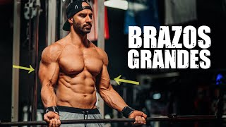 RUTINA DE BRAZOS (Biceps & Triceps) CON PREFERENCIAL | Gym topz