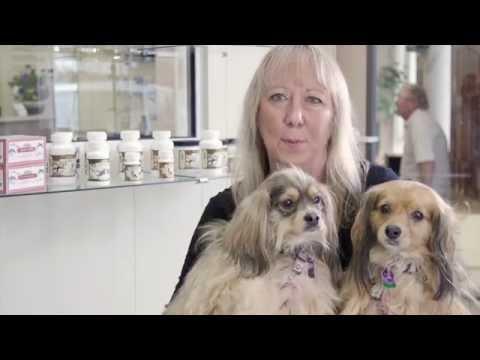 Jacksonville Beach FL Veterinarian - Holistic/Chinese Medicine Testimonial