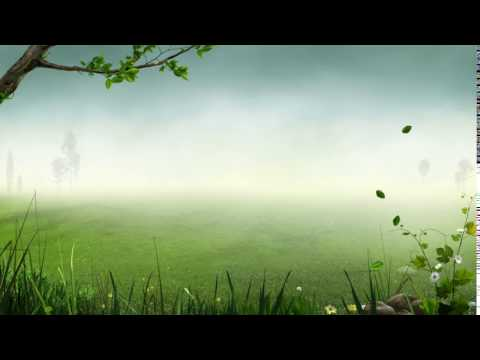 Forest Background Video Effects - Video Effects HD Free Stock  25fps video Templates Animation 1080p