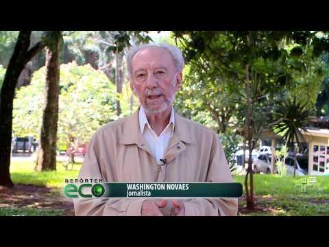 Repórter Eco - 31/05/2015