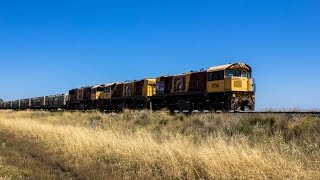 Train 66S9. First cattle train to use new Oakey Cattle Siding. 30/11/2016.