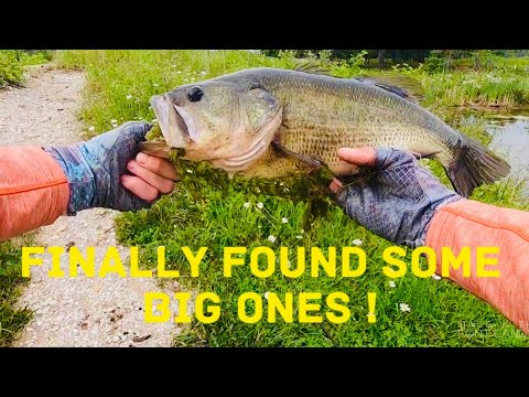 Quarry Fishing For Largemouth Bass
