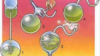 Trabajo de biologia Louis Pasteur