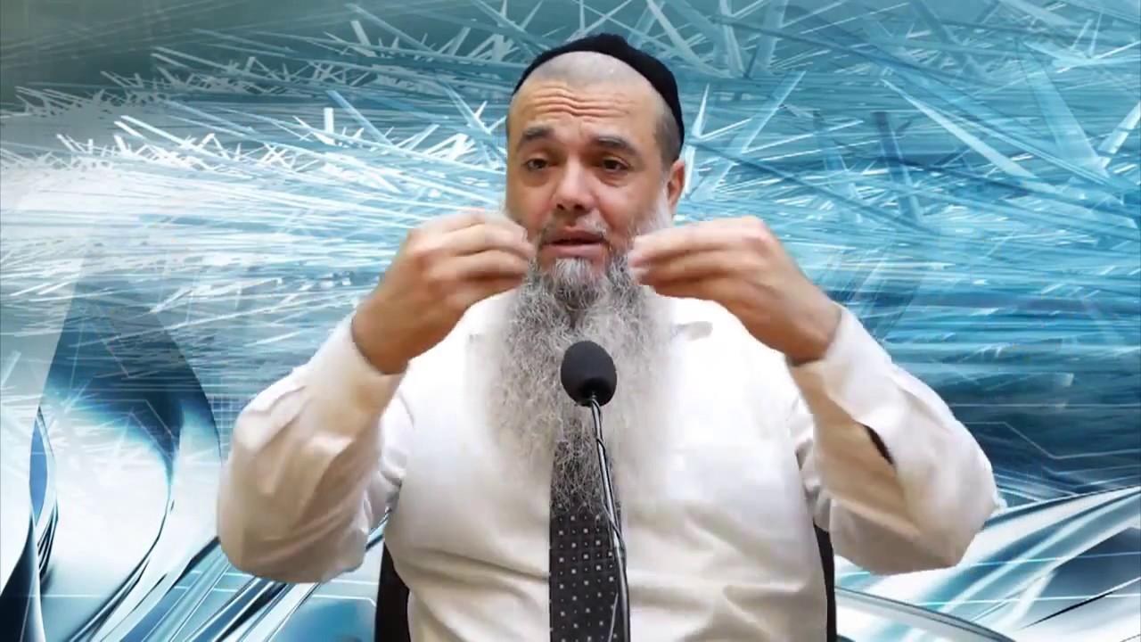 הרב יגאל כהן - ההשתדלות שלך לא מעלה ולא מורידה במאומה !