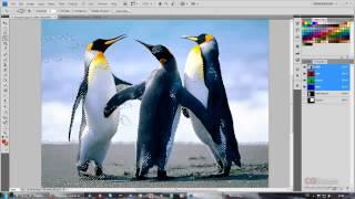 14 урок - Эксперт в Photoshop за 30 дней