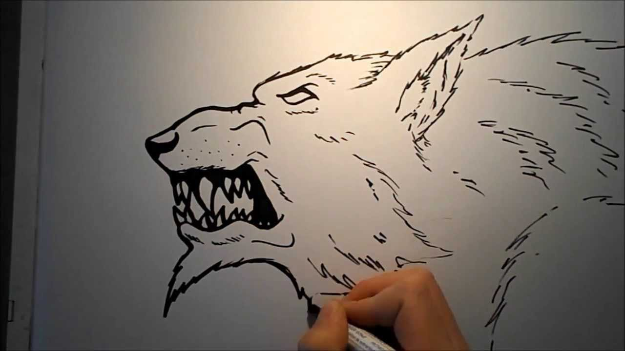 How To Draw A Werewolf Head (2nd Version) - YouTube