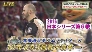 2016・10・29 広島マツダスタジアム.