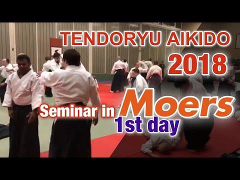 【海外指導】Moers seminar ① Tendoryu Aikido 2018