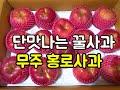 신맛없이 단맛나는 꿀사과를 원하신다면 무주 홍로 꿀사과를 농민직거래로 구매 하세요~