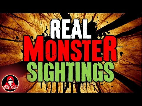 4 REAL Monsters in the Forest