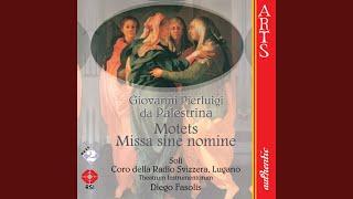 Ad Te Levavi Oculos Meos (Palestrina)