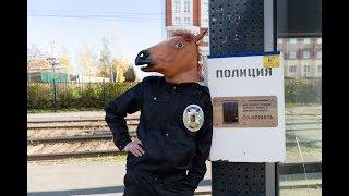 Служебный конь полиции или собаку к делу не пришьёшь