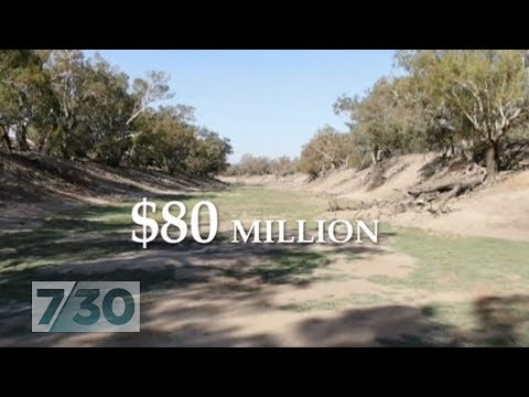 Murray-Darling water buyback controversy explained | 7.30