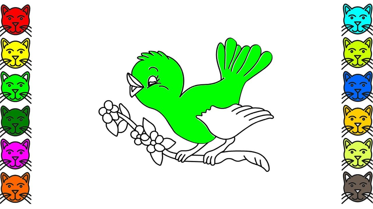Birds Coloring Pages For Kids | How To Draw Magpie Coloring Book For Kids