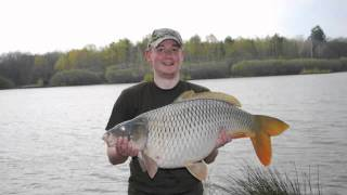y39;s Fishy Blues