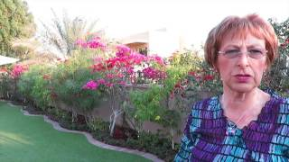 Arabian Ranches Garden Dubai