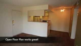 1 Bedroom,1 Bath, 550 square feet, at Canyon Creek Apartments in Dallas, Texas