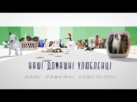Телеканал Z: Наші домашні улюбленці - Випуск 179 - 03.04.2020