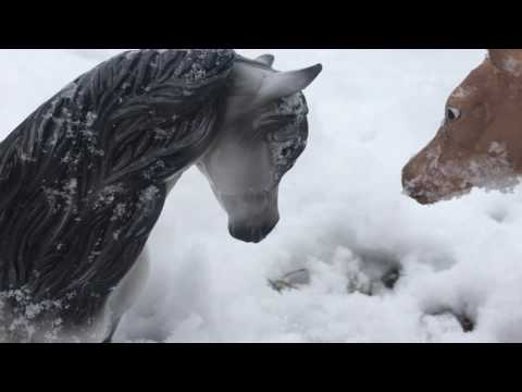 The Snow Prince - Breyer Horse Silent Film {7,000 Subscribers Special}
