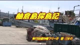 1700581 舳倉島 探鳥記 (TVF2017応募作品)