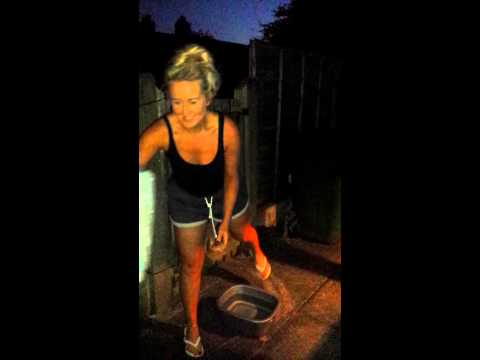 Charlotte ice bucket challenge!