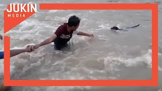 Friends Form Human Chain to Rescue Dog During Flash Flood