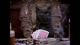 Сэйлем и покер с собаками.🐾♣️