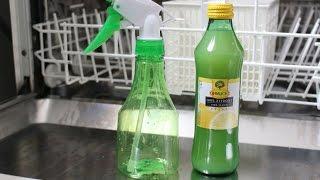 Geschirrspüler umweltfreundlich reinigen - Dishwasher Clean the environment