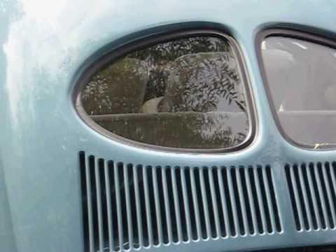 1952 VW SPLIT WINDOW BUG @ meldert 2010