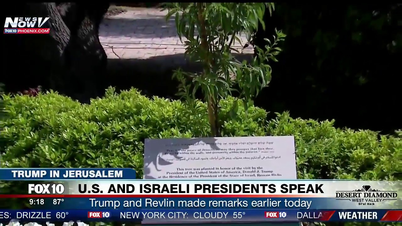 In A Historic First, Trump Visits Old City Of Jerusalem