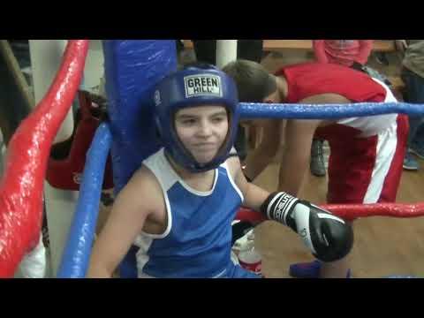 Боксеры в Валуйках
