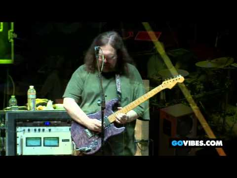 """Dark Star Orchestra Performs """"Bird Song"""" at Gathering of the Vibes 2012"""