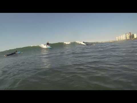 Escuela de surf camp longbeach
