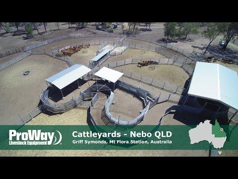 ProWay Cattleyards - Mt Flora Station, Nebo QLD