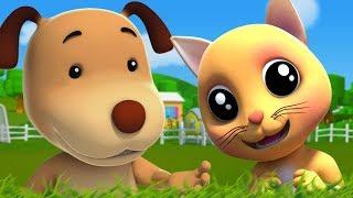 gatito gatito | gato rimas para niños | canciones infantiles | Farmees Español | Pussy Cat Pussy Cat