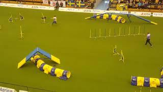 wow bfa arena