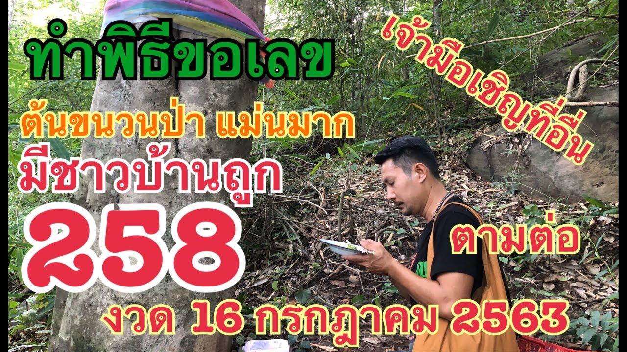 เจ้ามือเชิญที่อื่น ต้นขนวนป่า แม่นต่อเนื่อง มีคนชาวบ้านถูก 258 งวด 16 กรกฎาคม 2563