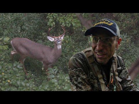 DEER DOWN! Early Season Bowhunting In Kentucky
