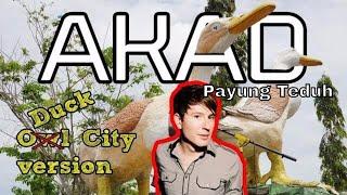 Akad - Payung Teduh (cover) bukan Owl City version