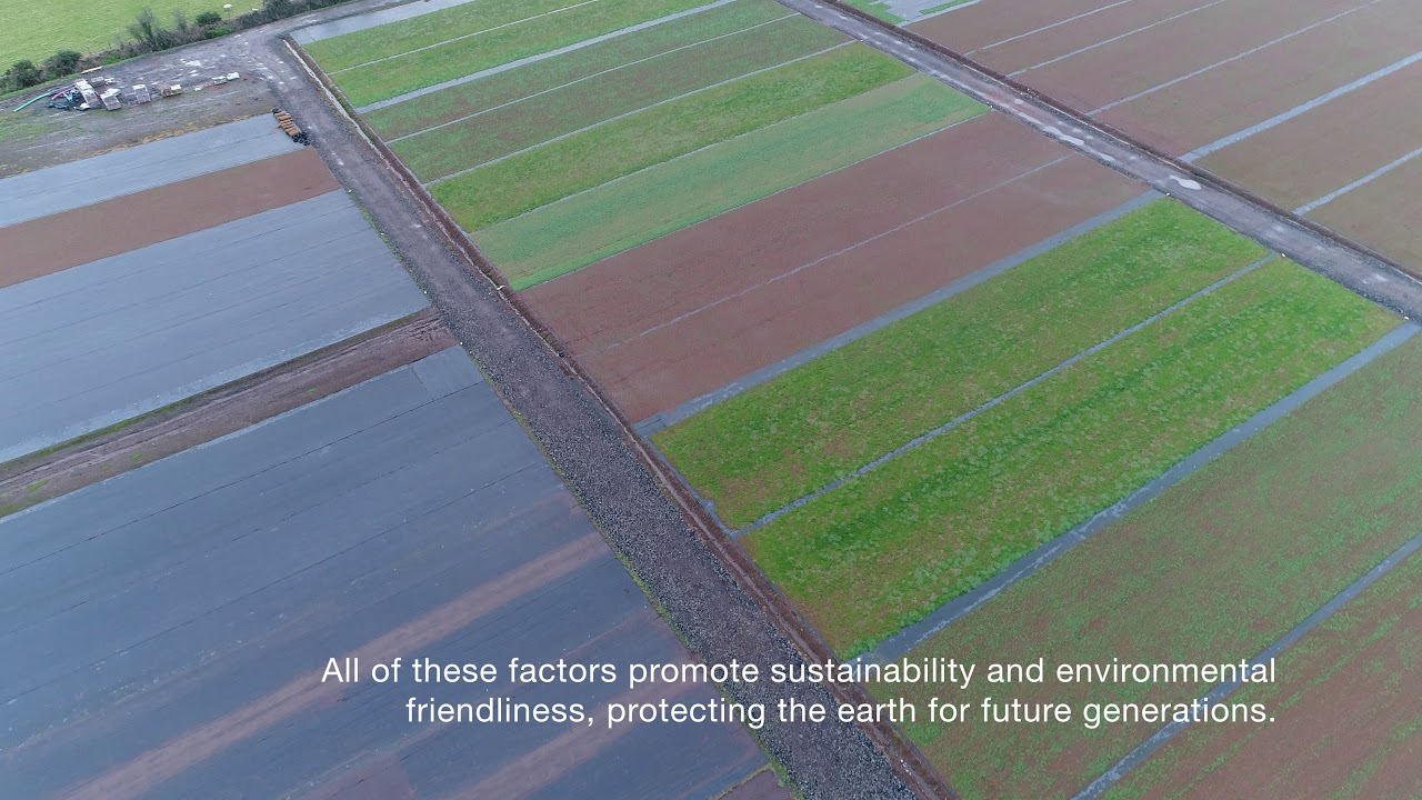 We are Green Roofs Direct - YouTube